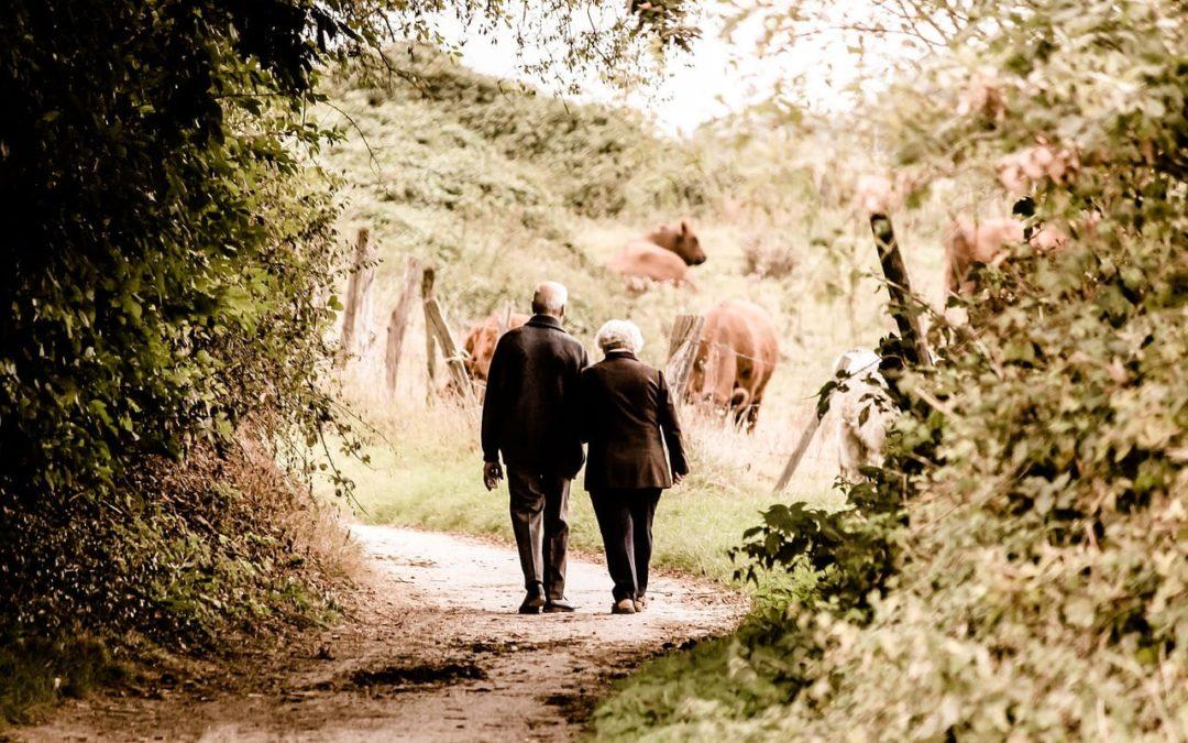 Danskerne får mindre i pension end de tror
